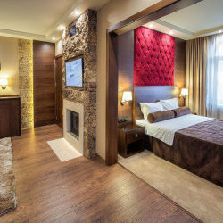 Luxury suite - Strannopriemnitsa