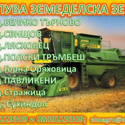 ТЪРНОВО ню